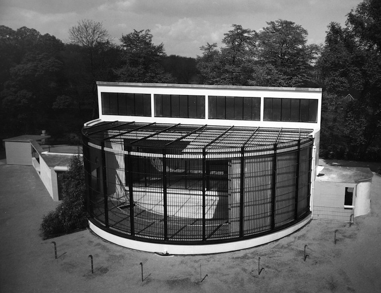 London Zoo, Gorilla House, Modernism, Architecture, Tecton group